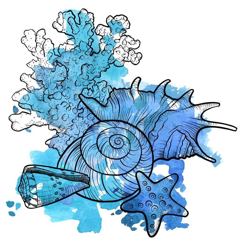 Vectorachtergrond met zeeschelpen vector illustratie