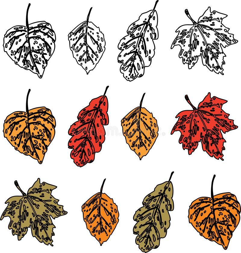 Vectorafbeelding van een reeks gestileerde herfstbladeren van verschillende bomen royalty-vrije illustratie