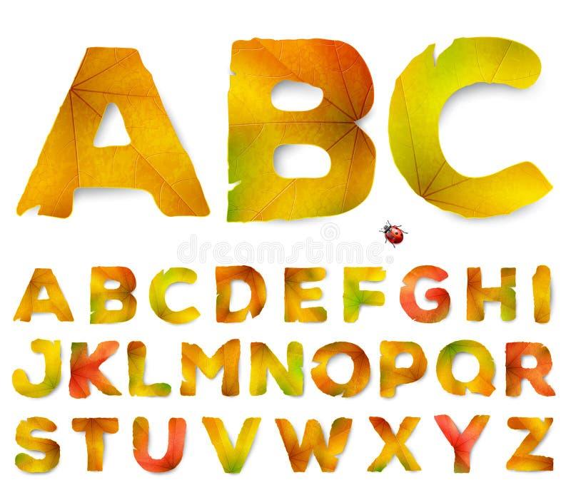 Vectoralfabetbrieven die van de herfstbladeren worden gemaakt royalty-vrije illustratie