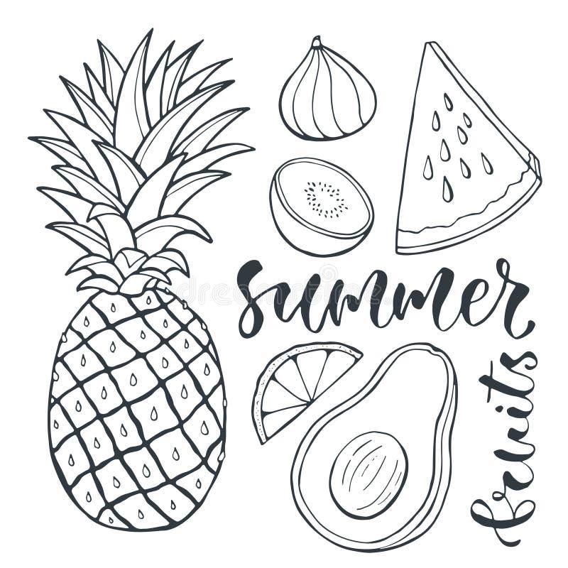 Vectorananas en gesneden vruchten Voedselillustratie voor drukontwerp, etiket en affiches royalty-vrije illustratie
