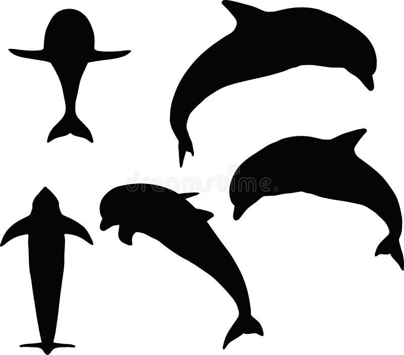 Vectorbeeld - dolfijnsilhouet op witte achtergrond royalty-vrije illustratie