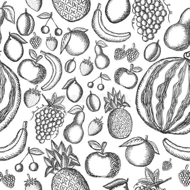 Vectorbeeld van geschilderde vruchten op een witte achtergrond Grafisch naadloos patroon royalty-vrije illustratie
