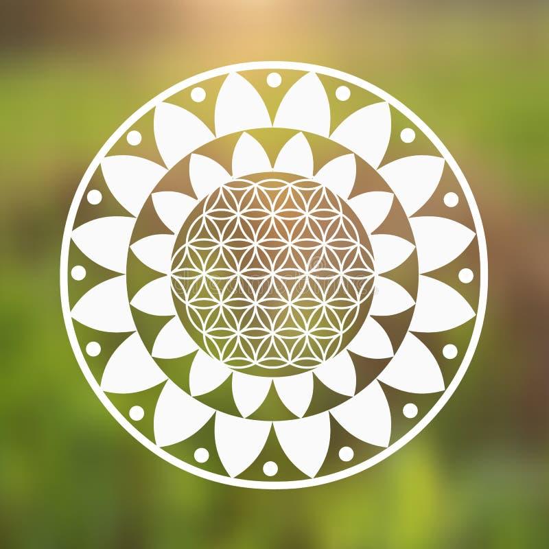 Vectorbloem van het Levenssymbool en Lotus Flower op een Natuurlijke Achtergrond stock afbeelding