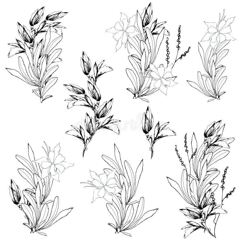 Vectorbloemreeksen Zwart-witte die contourbloemen met inkt op een witte achtergrond worden getrokken boeketten Schets voor tatoeg royalty-vrije illustratie