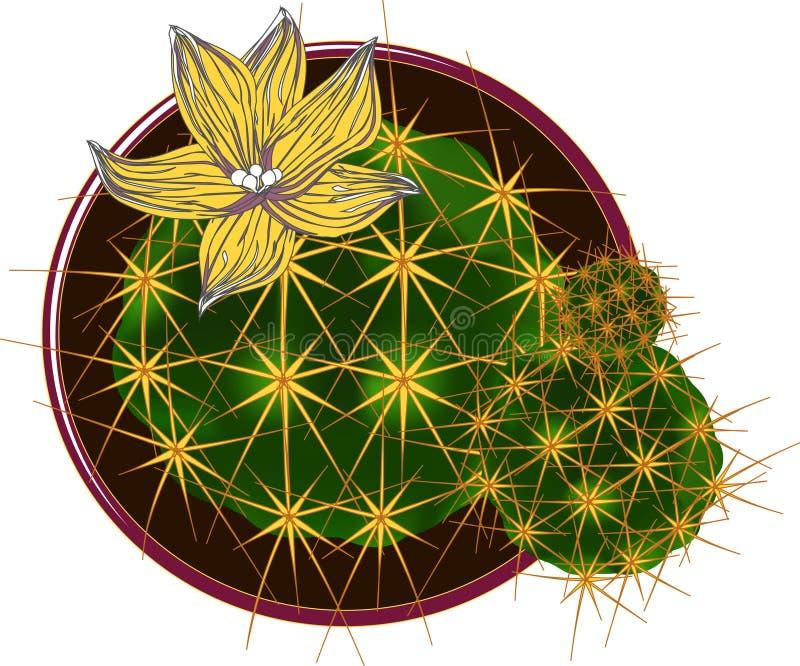 Vectorcactus met bloem royalty-vrije illustratie