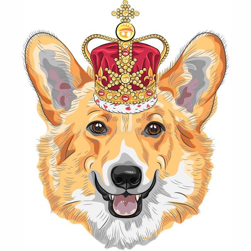 Vectorcorgi die van Pembroke Welsh van de schetshond in gouden kroon glimlachen vector illustratie