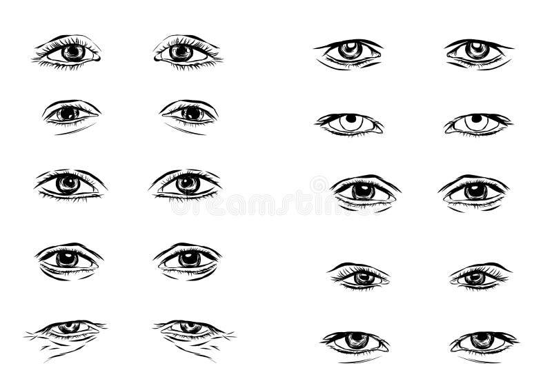 Vectordeel van de mannelijke persoonss ogen en de wenkbrauwen vector illustratie