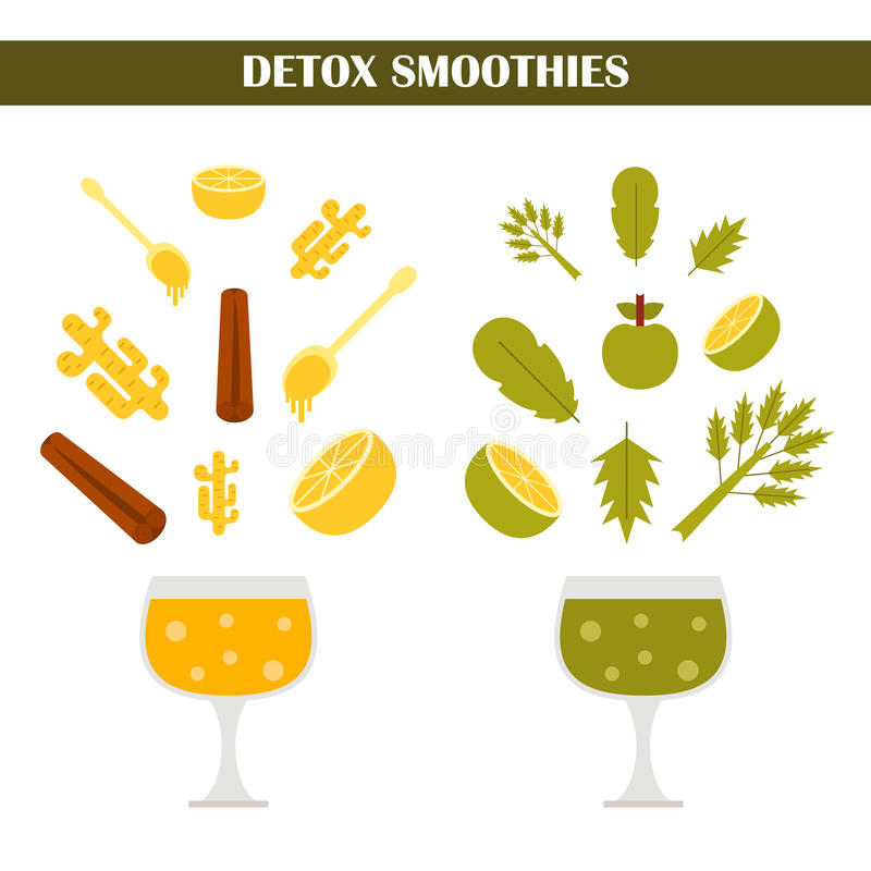 Vectordetox smoothies consrtuctor royalty-vrije illustratie