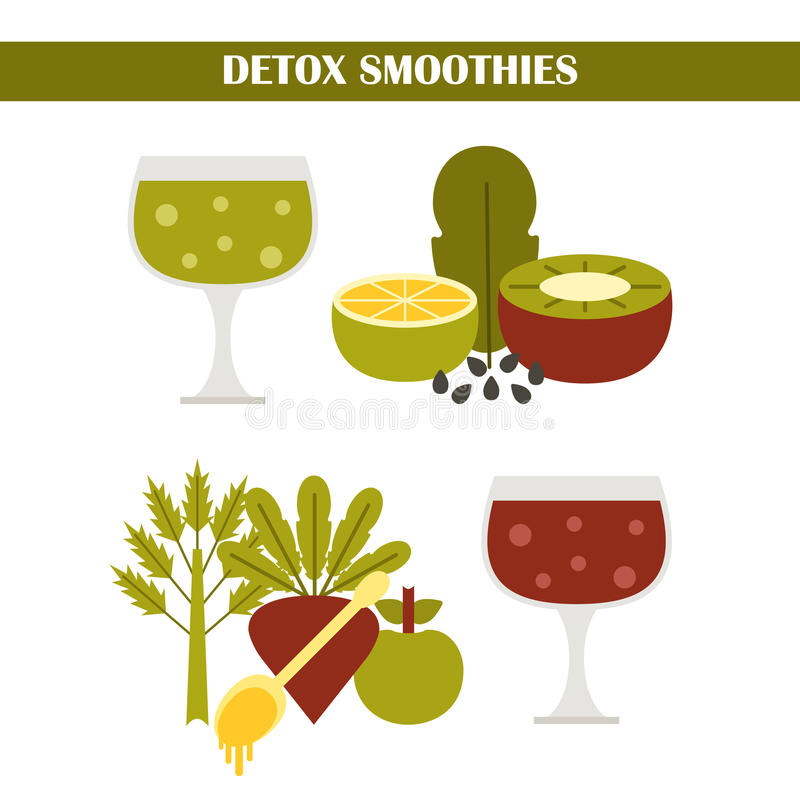 Vectordetox smoothies consrtuctor vector illustratie