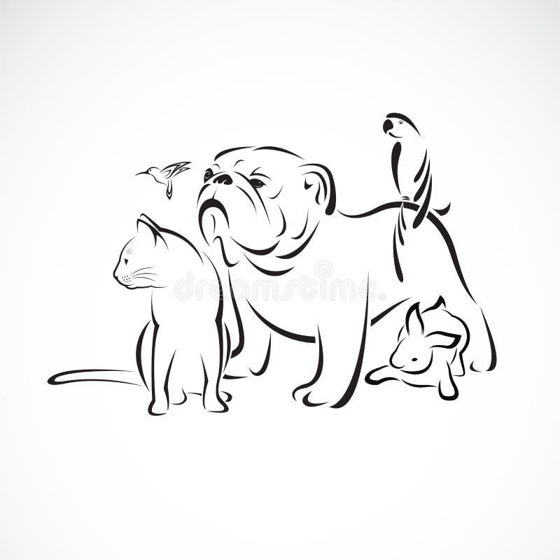 Vectordiegroep huisdieren - Hond, kat, vogel, ara, konijn op witte achtergrond wordt geïsoleerd , Huisdierenembleem of Pictogram, vector illustratie
