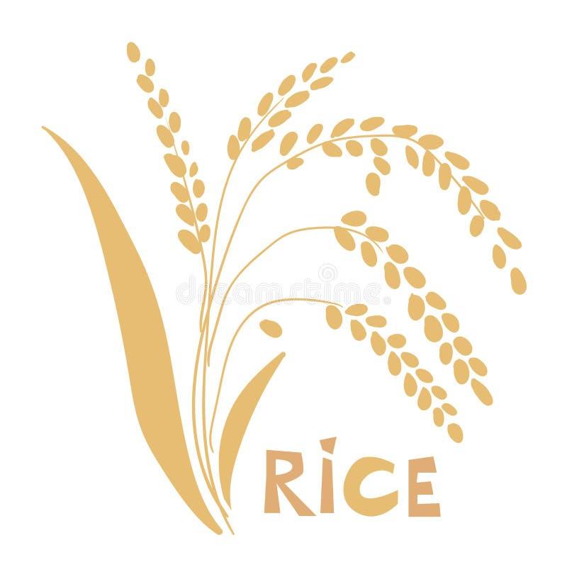 Vectordieillustratie van rijstinstallatie op witte achtergrond wordt geïsoleerd stock afbeeldingen