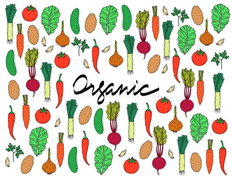 Vectordiereeks groenten op een witte achtergrond met de inschrijving Organisch in het centrum wordt geïsoleerd royalty-vrije stock foto's