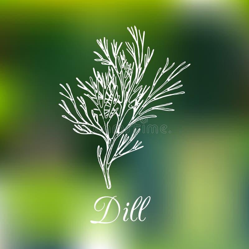 Vectordilleillustratie op vage achtergrond Hand getrokken schets van kruidinstallatie Botanische tekening van aromatisch kruid royalty-vrije illustratie