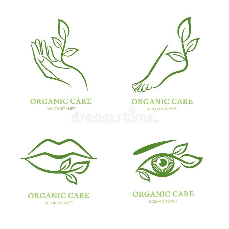 Vectorembleem, etiket, embleemreeks Vrouwelijke hand, voet, oog, lippen met groene bladeren, vector illustratie
