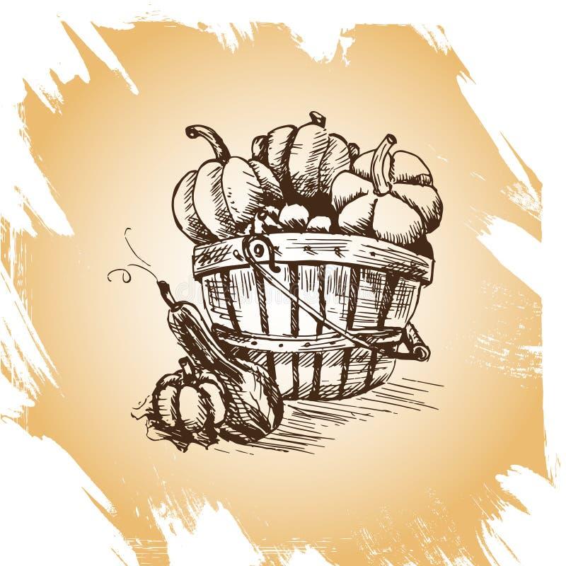 Vectorhand getrokken uitstekende illustratie van pompoen royalty-vrije illustratie