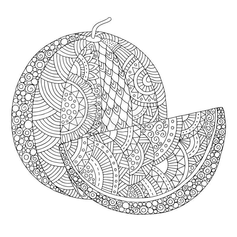 Vectorhand getrokken watermeloenillustratie voor volwassen kleurend boek Schets uit de vrije hand voor volwassen antispannings kl vector illustratie