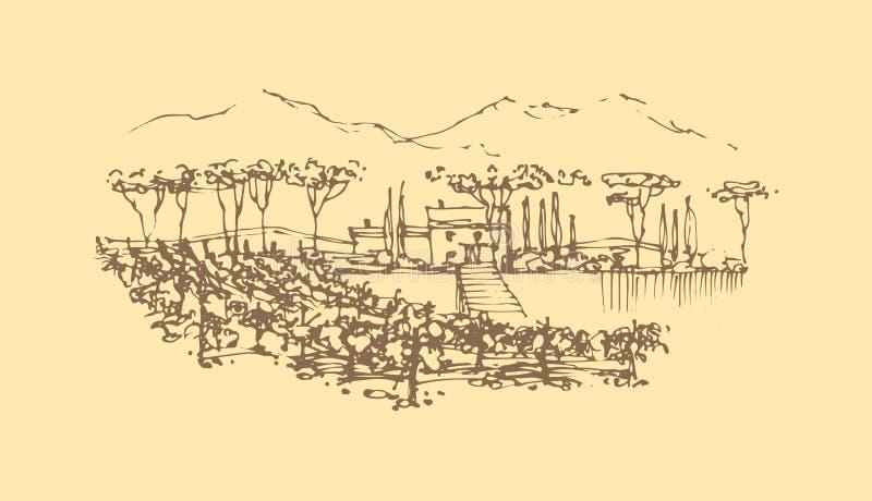 Vectorhand getrokken wijnlandschap royalty-vrije illustratie