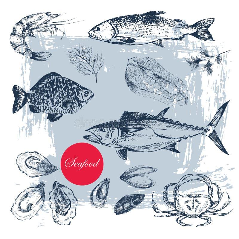 Vectorhand getrokken zeevruchtenreeks royalty-vrije illustratie