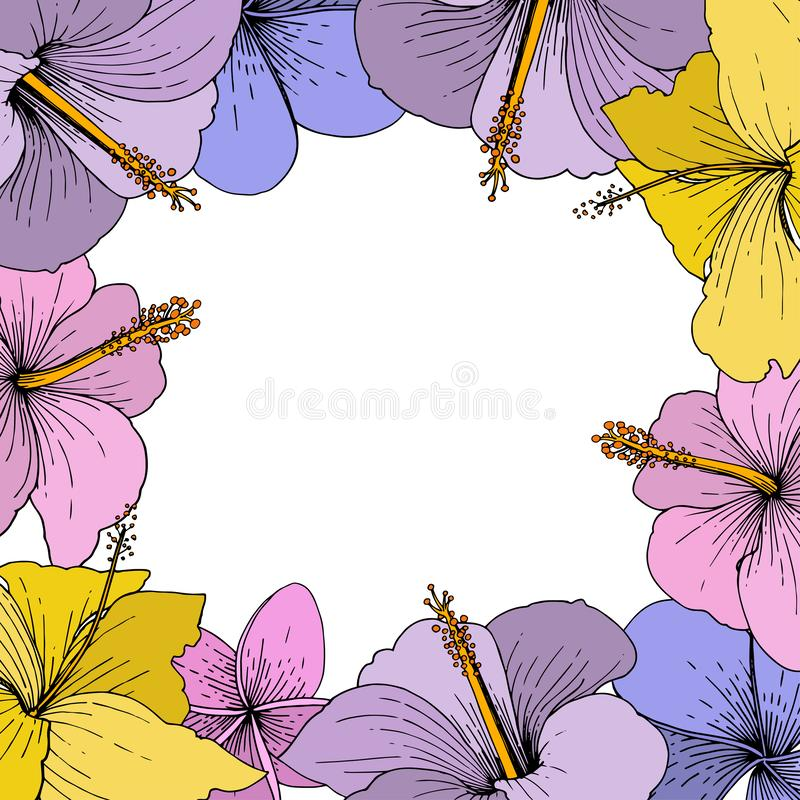 Vectorhibiscus bloemen tropische bloemen Gegraveerde inktkunst op witte achtergrond Het ornamentvierkant van de kadergrens royalty-vrije illustratie