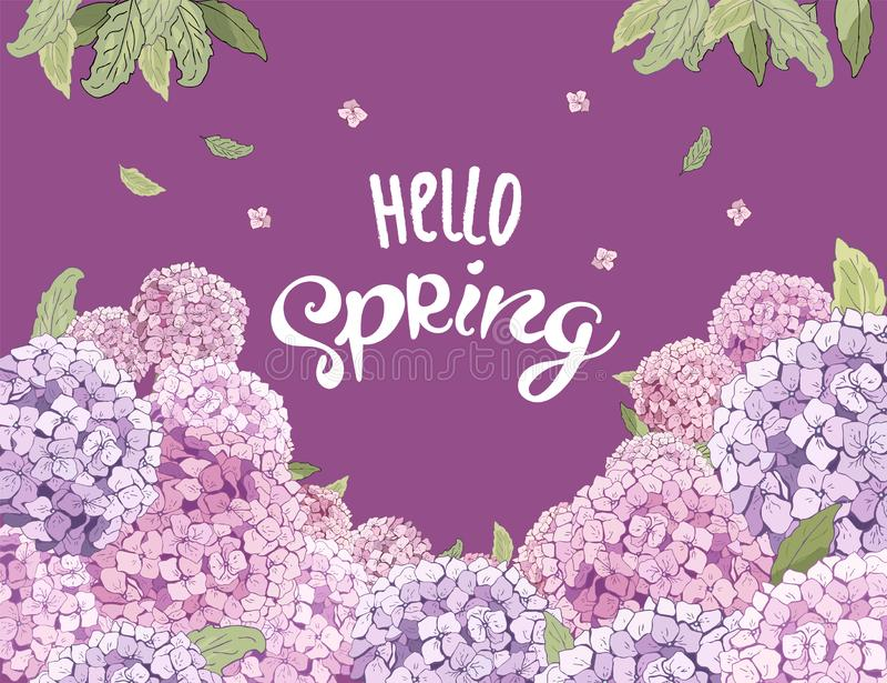 Vectorhydrangea hortensiabloem bloesem voor 8 Maart, huwelijk, de Dag van Valentine, Moederdag, verkoop, seizoengebonden gebeurte vector illustratie
