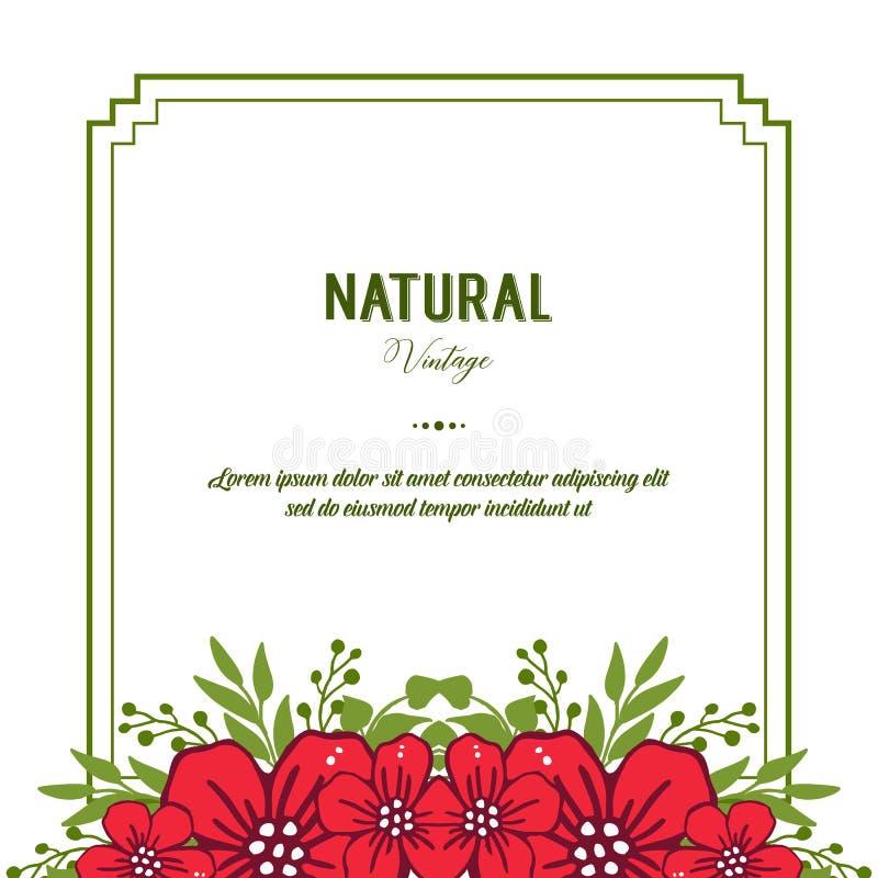 Vectorillustratie decoratief van natuurlijke wijnoogst voor de kadersbloei van de menigte rode bloem vector illustratie