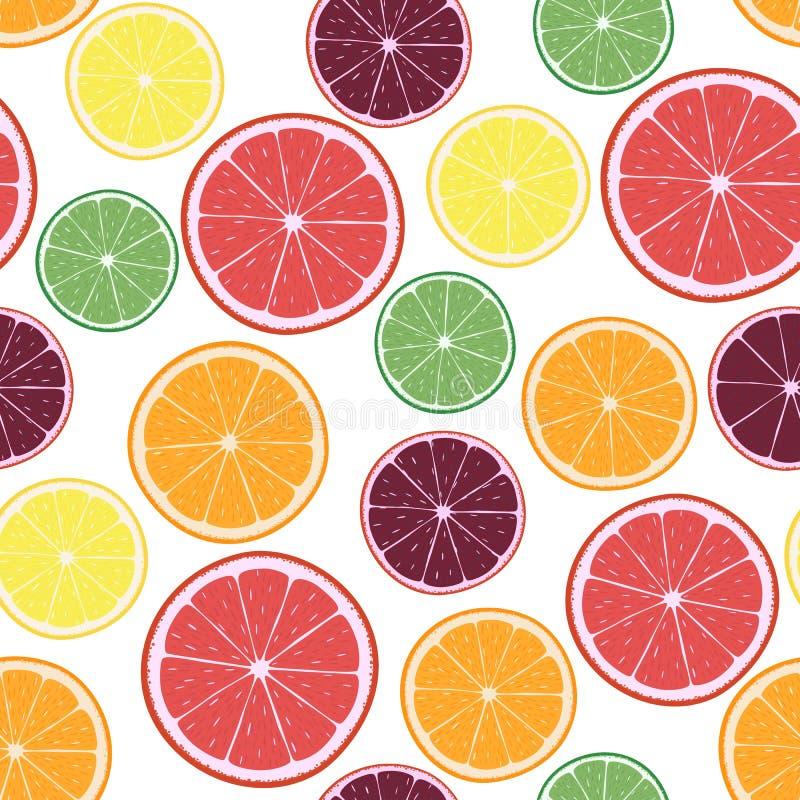 Vectorillustratie met citrusvruchtensinaasappelen, citroenen, grapefruits, kalk en mandarijnenringen royalty-vrije illustratie
