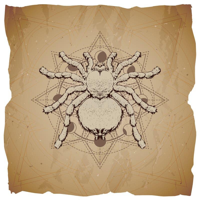 Vectorillustratie met hand getrokken Spin en Heilig geometrisch symbool op oude document achtergrond met gescheurde randen Abstra vector illustratie