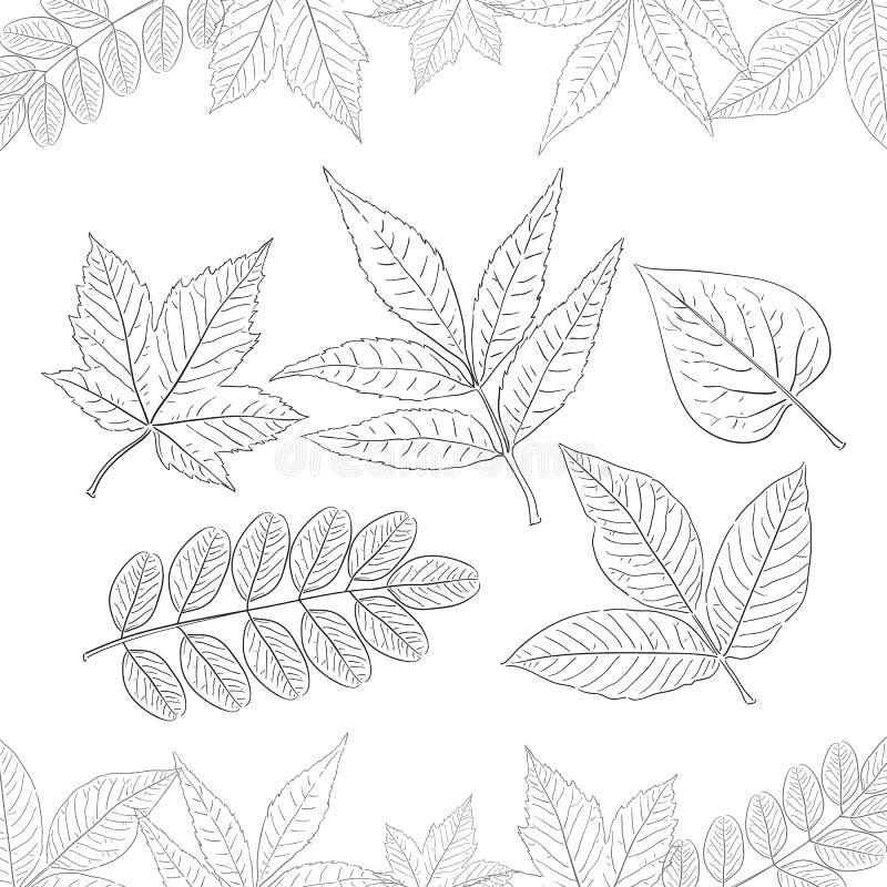Vectorillustratie: Reeks hand-drawn bladeren op witte achtergrond wordt geïsoleerd die Decoratie voor de Herfstontwerp royalty-vrije illustratie