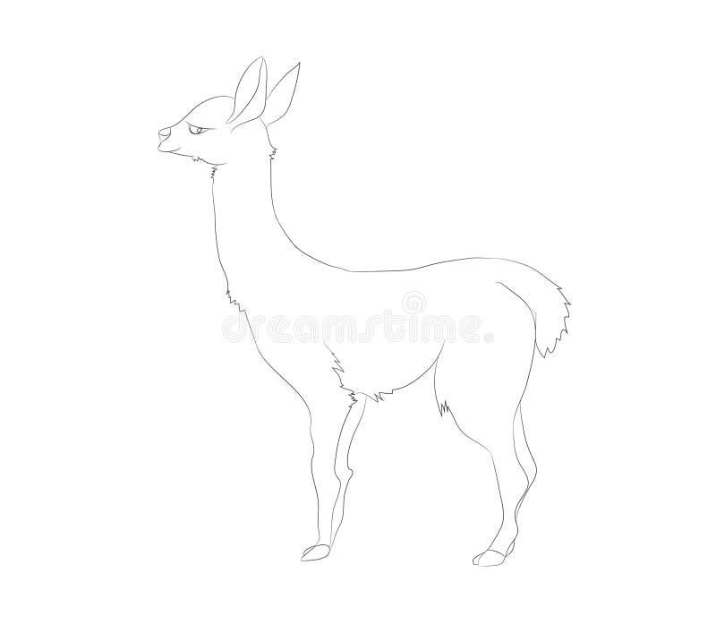 Vectorillustratie van alpaca die tribunes, lijntekening vector illustratie