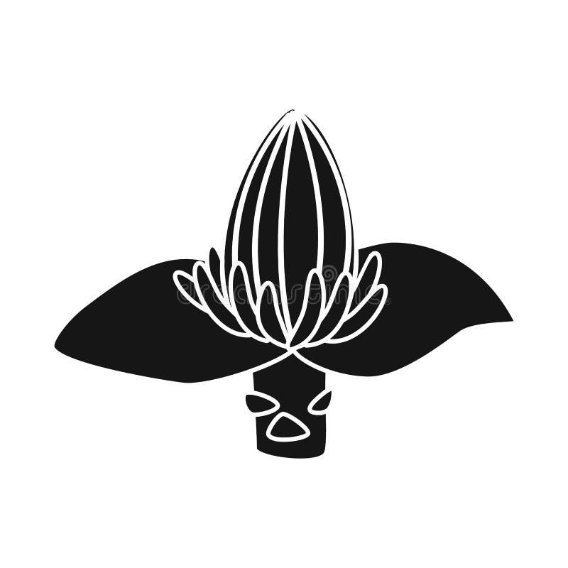 Vectorillustratie van banaan en bloemsymbool Reeks van banaan en tropisch vectorpictogram voor voorraad royalty-vrije illustratie