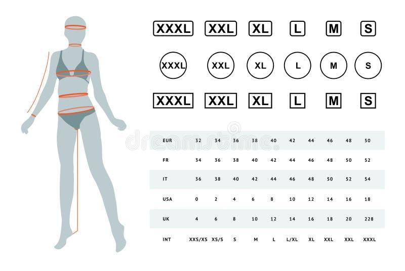 Vectorillustratie van de afmetingen van een vrouwelijk lichaam stock illustratie