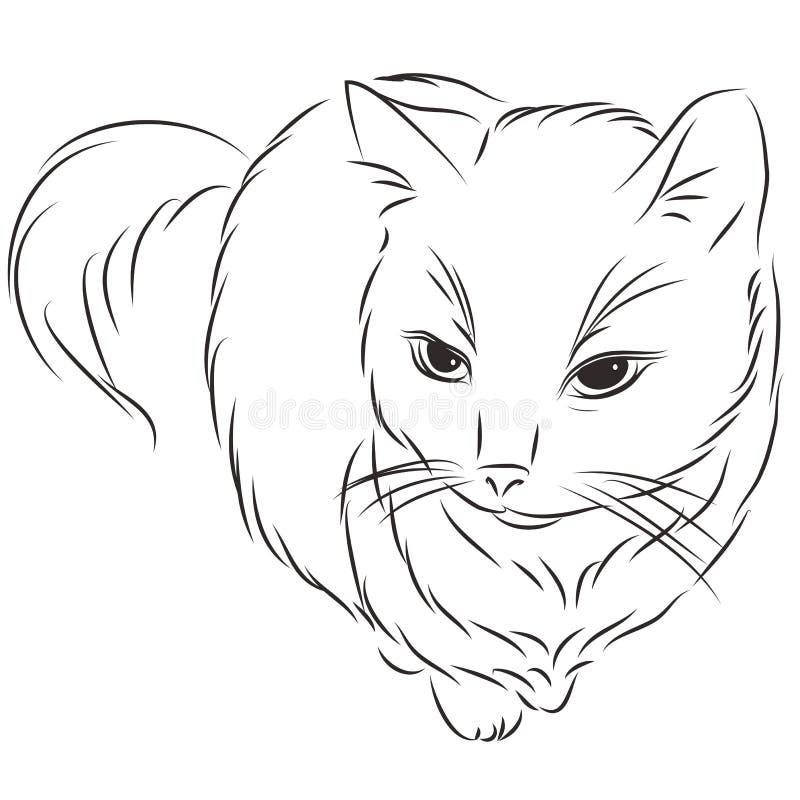 Vectorillustratie van een kat stock illustratie