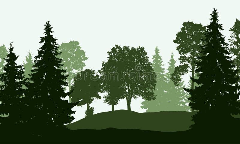 Vectorillustratie van een vergankelijk en naaldbos vector illustratie