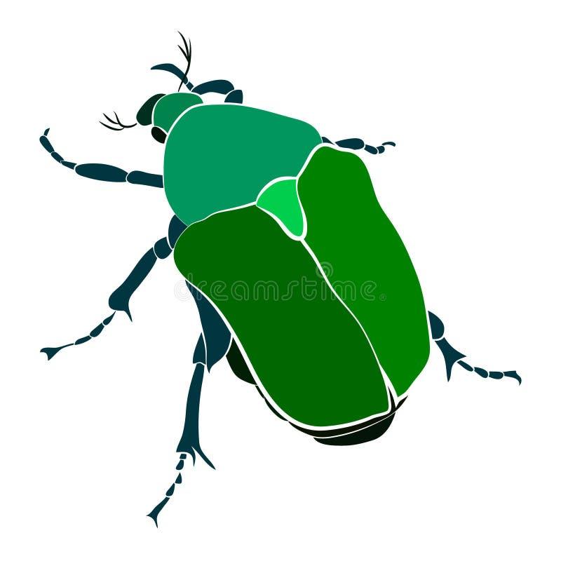 Vectorillustratie van groene kever Cryptocephalussericeus vector illustratie