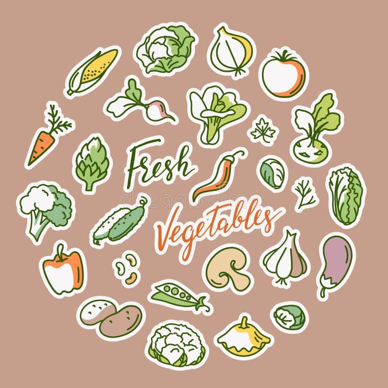 Vectorillustratie van groente met een plaats voor tekst stock illustratie