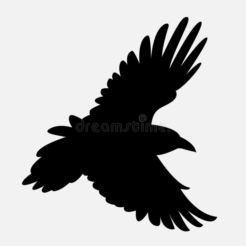 Vectorillustratie van het raaf de zwarte silhouet stock foto's