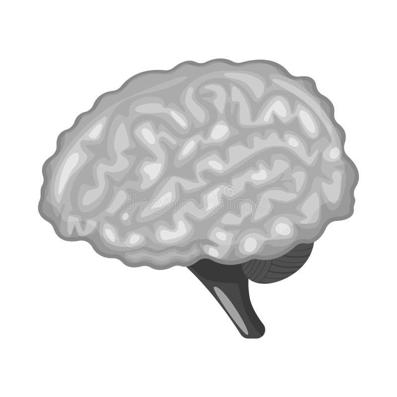 Vectorillustratie van intern en medisch embleem Reeks van de vectorillustratie van de interne en gezondheidsvoorraad stock illustratie