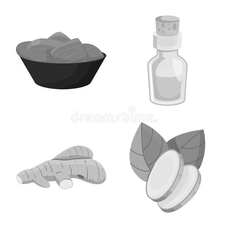 Vectorillustratie van kruid en ingrediëntenembleem Inzameling van kruid en productvoorraadsymbool voor Web stock illustratie