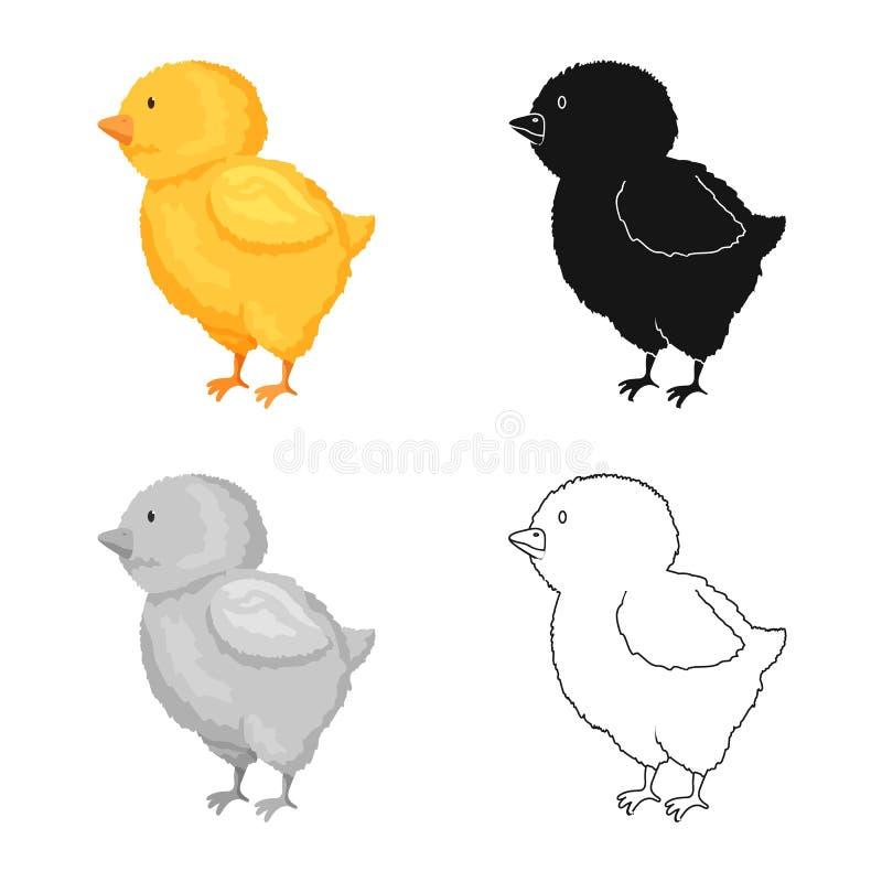 Vectorillustratie van kuiken en Pasen-embleem Reeks van kuiken en leuk voorraadsymbool voor Web royalty-vrije illustratie