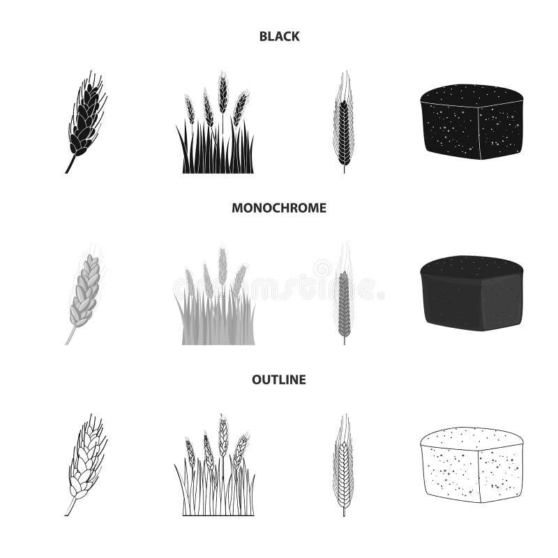 Vectorillustratie van landbouw en de landbouwpictogram Inzameling van landbouw en installatie vectorpictogram voor voorraad royalty-vrije illustratie