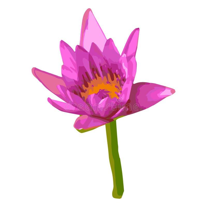 Vectorillustratie van roze lotusbloem royalty-vrije illustratie