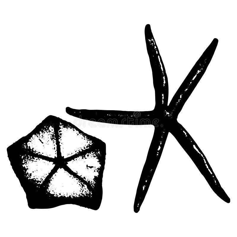 Vectorillustratie van twee verschillende overzeese sterren in zwart-wit stock illustratie