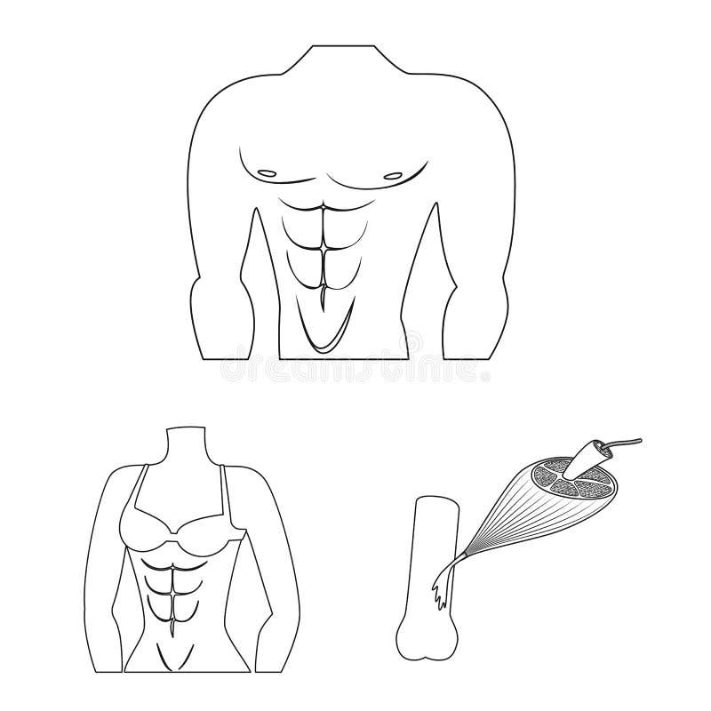 Vectorillustratie van vezel en spierembleem Inzameling van vezel en lichaamsvoorraad vectorillustratie royalty-vrije illustratie