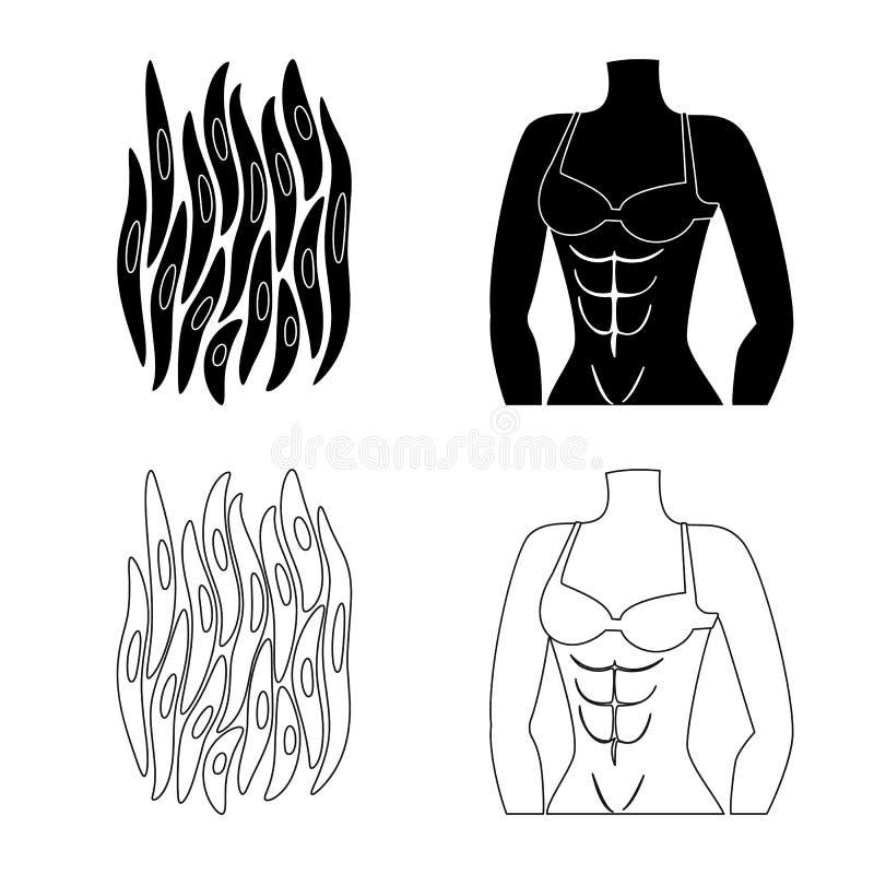 Vectorillustratie van vezel en spiersymbool Reeks van vezel en lichaamsvoorraad vectorillustratie royalty-vrije illustratie