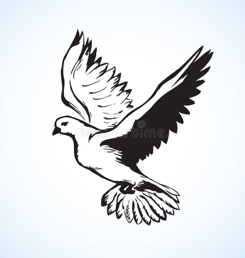 Vectorillustratie Vliegende duif vector illustratie