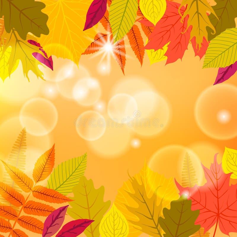 Vectorkaart met de herfstdecor royalty-vrije illustratie