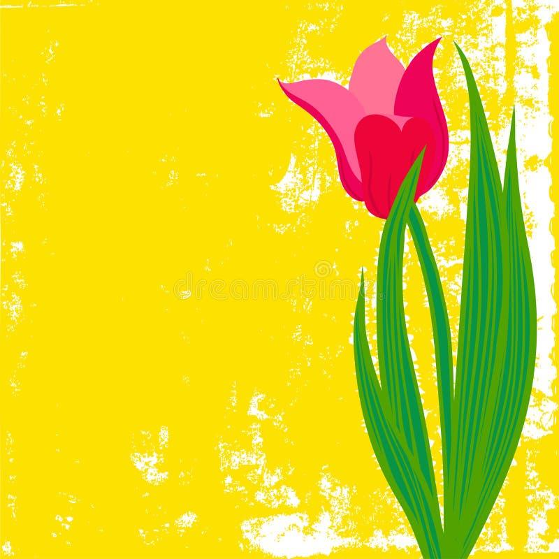 Vectorkaart met rode tulp op geweven achtergrond. stock illustratie