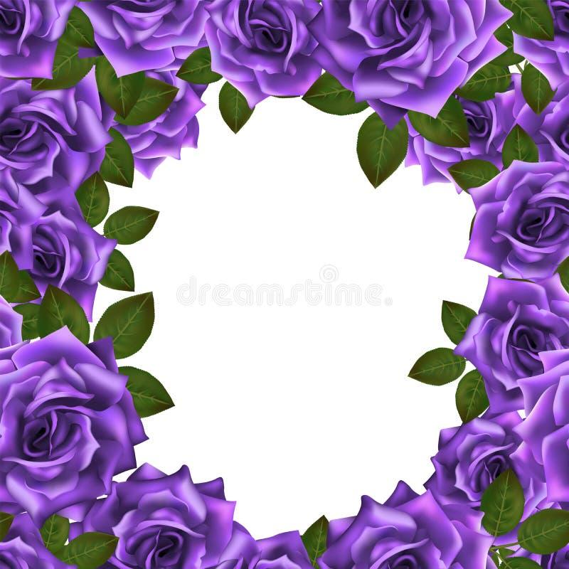 Vectorkader als achtergrond met purpere rozen en plaats voor tekst royalty-vrije illustratie