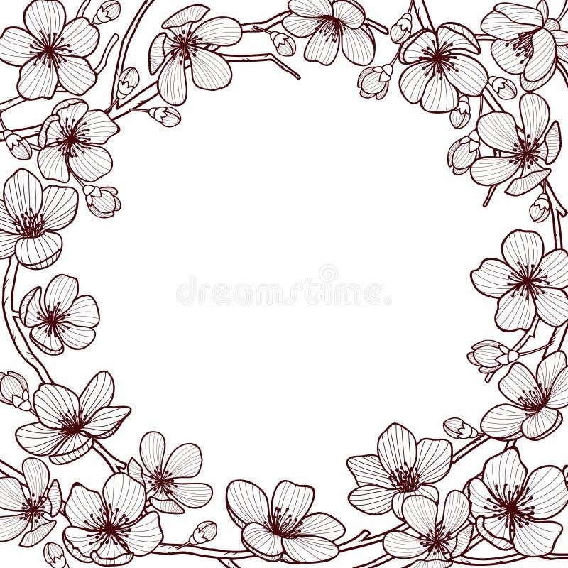 Vectorkader met hand getrokken grafische takken van een het tot bloei komen sakura van de kersenboom vector illustratie