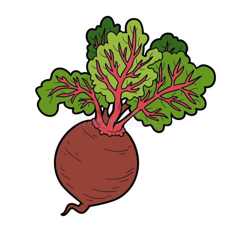 Vectorkleurenillustratie, groenten, Biet vector illustratie